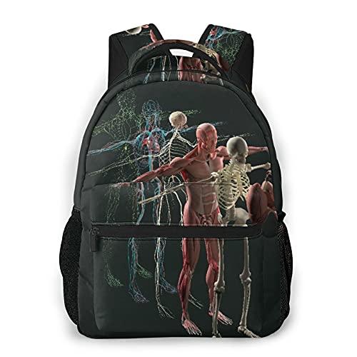 Kanxdecor Zaino casual,Anatomia umana Vista esplosa Organi ossei mus, borsa da viaggio con cerniera, per affari, scuola, lavoro, borsa per laptop 16 'X11.5'X8'