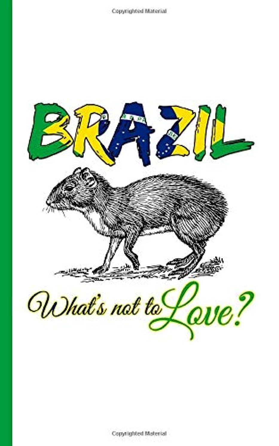 オセアニア岩哲学的Brazil Flag Agouti Animal Journal - Brasil, What's Not To Love? Notebook: Blank Writing Diary Planner Note Book, 100 Lined + 8 Blank Pages, Travel Size (Brazil Travel Gifts Vol 3)