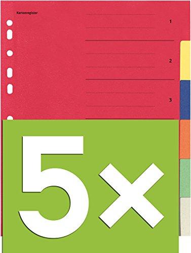 Falken Karton-Register für DIN A4 24 x 29,7 cm volle Höhe mit Organisationsdruck (6-teilig | 5er Pack)