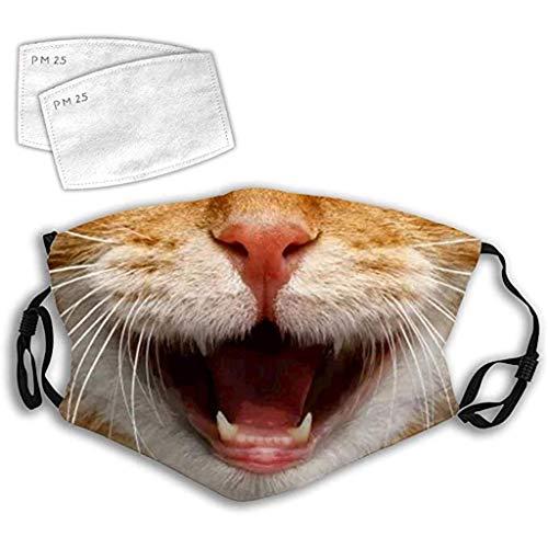 Eariy Katzen-Aufdruck, wiederverwendbar, Anti-Umweltverschmutzung, Mundschutz mit 2 Filtern und verstellbaren Ohrriemen, persönlicher Schutz für drinnen und draußen