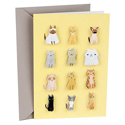 Hallmark Signature Blank Card (Cute Cats)