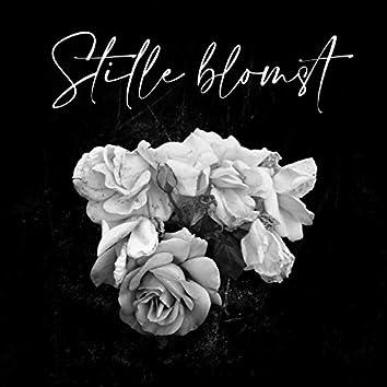 Stille Blomst