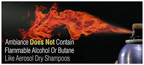 Ambiance Dry Shampoo–3-in-1 Cleans, Covers & Conceals. Absorbs Oil to Refresh Hair, Boosting Body & Shine. Covers Roots…