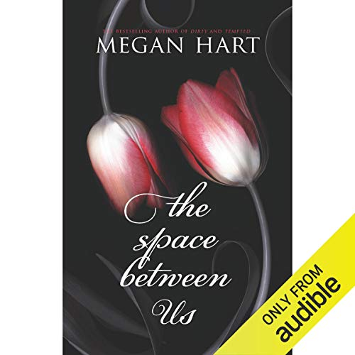 The Space Between Us  By  cover art