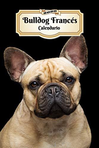 2020 Bulldog Francés Calendario: 107 Páginas | Tamaño A5 | Planificador Semanal | 12 Meses | 1 Semana en 2 Páginas | Agenda Semana Vista | Tapa Blanda | Perro