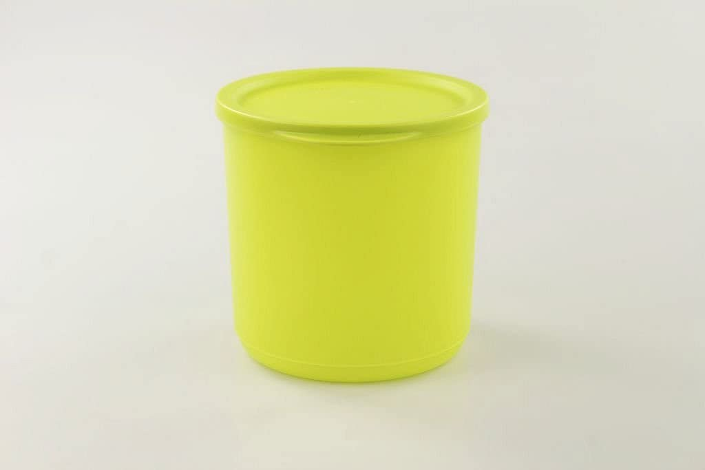 Tupperware Food Savers with airtight Cover (1.1L / 4cup)