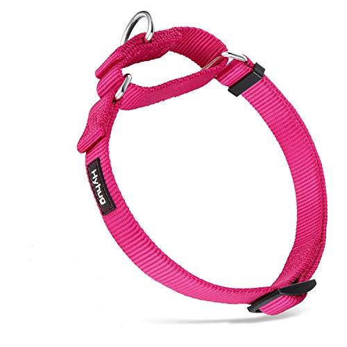 Hyhug Collar de Perro Grande para niños y niñas Stingdy Martingale Resistente a la Fuga - Uso Diario para Caminar (Grande L, Rosa roja)