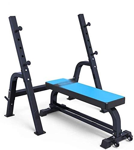 Cnley Set de combinación de press de banca para sentadillas, banco de pesas, equipo multifunción para fitness, equipo de entrenamiento de pesas (color: azul, tamaño: 136 x 44 x 46 cm)