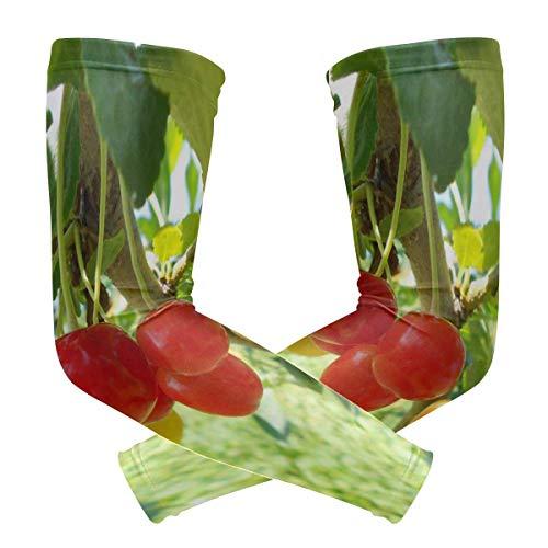 hgfyef Armstulpen Bonners Ferry Nursery Herren Sonnenschutz UV-Schutzhüllen Armstulpen Cool Long Set Covers