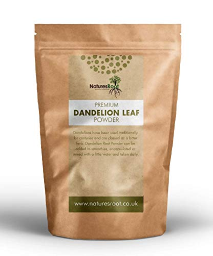 Nature's Root Dandelion Leaf Powder 500g - Raw Dietary Supplement | Healthy Digestion | Rich in Calcium | Non-GMO | Vegan Friendly