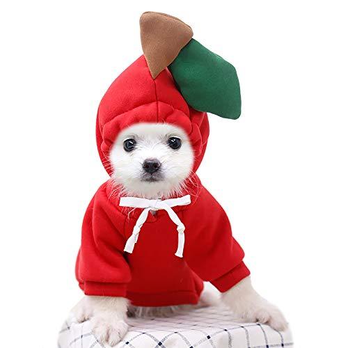 NixueLiLi Dog Pet Clothes, Small Medium Large Dog Costumes Animal Fruit Alliance Frog/Pineapple/Apple/Banana/Peach Hooded Sweater, Winter Puppy Coats Cartoon Style Dog Jackets Warm Apparel (XXL, R)