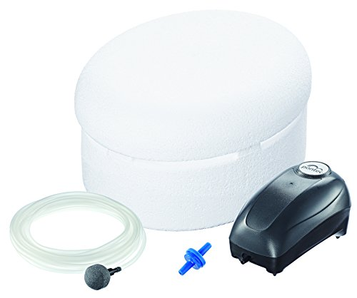 Pontec 57685 PondoPolar Air Eisfreihalter - einfacher und effektiver Frostschutz mit Luftpumpe für Gartenteich Schwimmteich Fischteich Pool