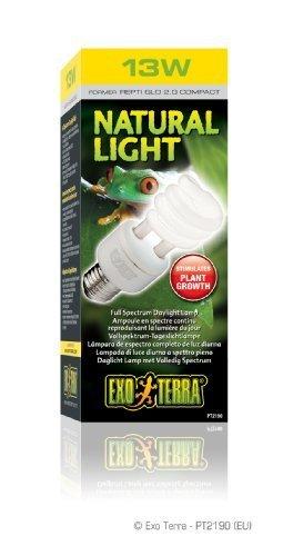 Exo Terra Repti-Glo 2.0 Compact Fluorescent Full Spectrum Terrarium Lamp, 13-Watt by Exo Terra