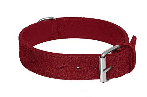 BB_Bardog Collar artesanal de piel estilo caballo rojo, talla XS (Artisan Collar Calf Hair Leather Red, Size XS)