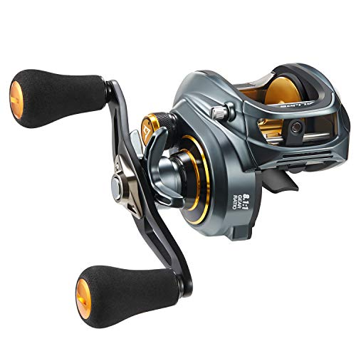 Piscifun Alijoz Baitcasting Reels Size 300 Low Profile Baitcaster Aluminum Frame Baitcast Fishing Reel, 33lb Drag 8.1:1 Gear Ratio Freshwater Saltwater Double Handle Casting Reels (Right Handed)