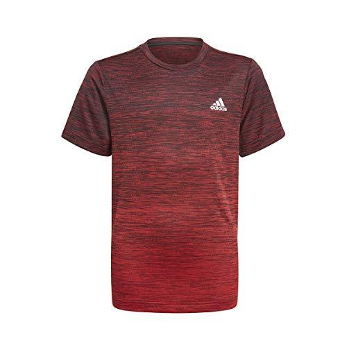 adidas Camiseta Modelo B A.R. Grad tee Marca