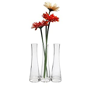 Silk Flower Arrangements ComSaf Small Glass Vase for Flower Bud Home Decor Clear 8.5 Inch, Pack of 3