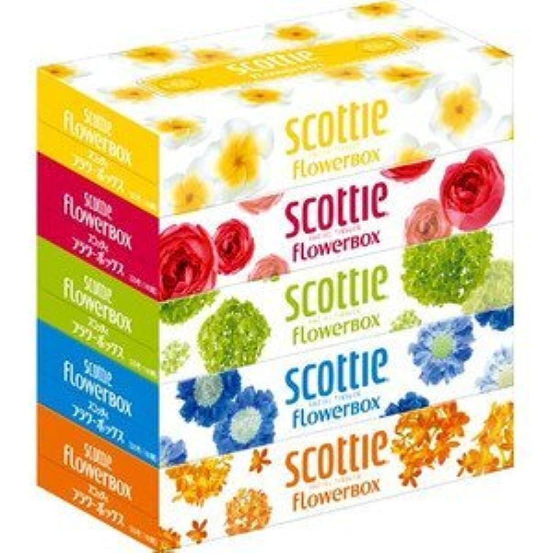キャッチ歌手ゲートウェイスコッティティシュー フラワーボックス 320枚(160組)5箱パック×5セット