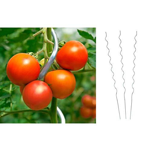 Dokado Tomaten-Spiralstab, Stahl verzinkt 180 cm Tomatenstäbe Tomatenpflanzstab, Set:10