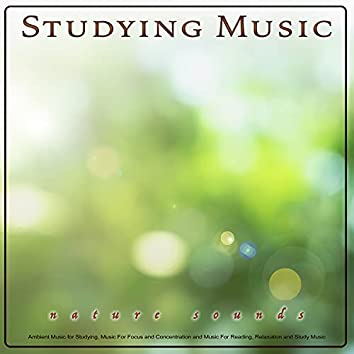 Studying Music: Ambient Music and Nature Sounds for Studying, Music For Focus and Concentration and Music For Reading, Relaxation and Study Music