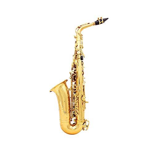 Andoer 1680d Saxophon-Tasche, wasserabweisend, Oxford-Stoff, gepolstert, Baumwolle, weich, Verstellbare Schultergurte, Tasche für Alt-Saxophon Alto Sax