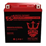 YTX30L-BS | 30L-BS High Performance - Maintenance Free - Sealed AGM Motorcycle Battery by Neptune