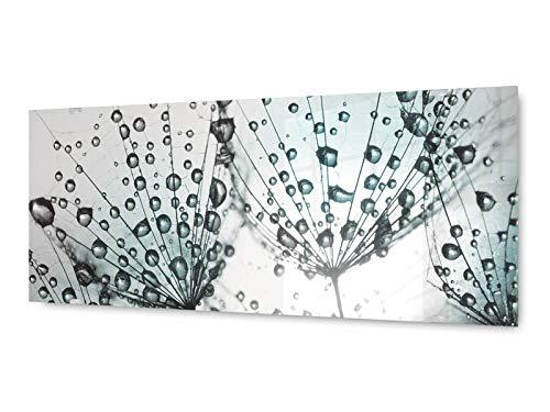 KD Dsign+ Glasbild Wandbild GLX12554512856 Morgentau Pusteblume 125 x 50cm / inkl. neues Aufhängesystem