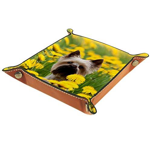 Caja de almacenamiento pequeña, bandeja de valet para hombre,Yorkshire Terrier Retrato Prado Floreciente ,Organizador de cuero para llaves de caja de monedas