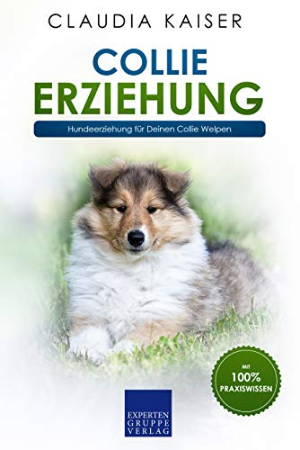 Collie Erziehung Hundeerziehung Fur Deinen Collie Welpen Ebook Kaiser Claudia Amazon De Kindle Shop