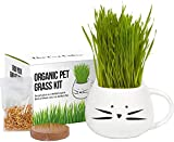 Organic Cat Grass Growing kit with Organic Seed Mix, Organic Soil and Cat...