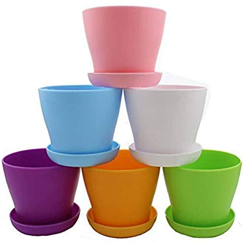 Dproptel Lot de 6 petits pots de fleurs colorés en plastique pour intérieur moderne avec palette pour toutes les plantes d'intérieur, fleurs, herbes, plantes grasses et plantes à suspendre, 4.7inch
