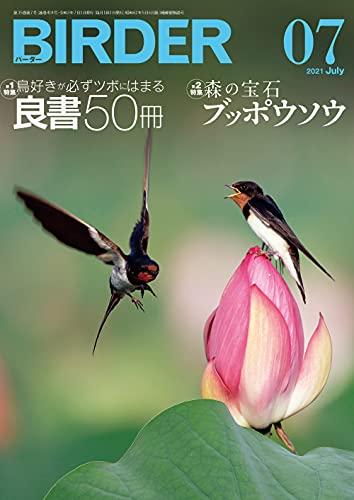 BIRDER (バーダー) 2021年 07月号 [雑誌]