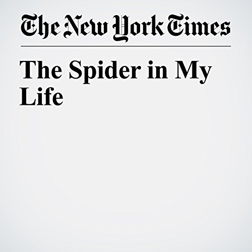The Spider in My Life copertina