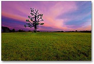 Premium textilduk 90 cm x 60 cm tvär, järnträd för solnedgång | väggbild, bild på kil ram, färdig bild på äkta kanvas, kan...