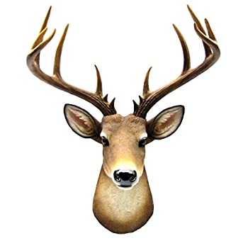 Best deer wall mount Reviews