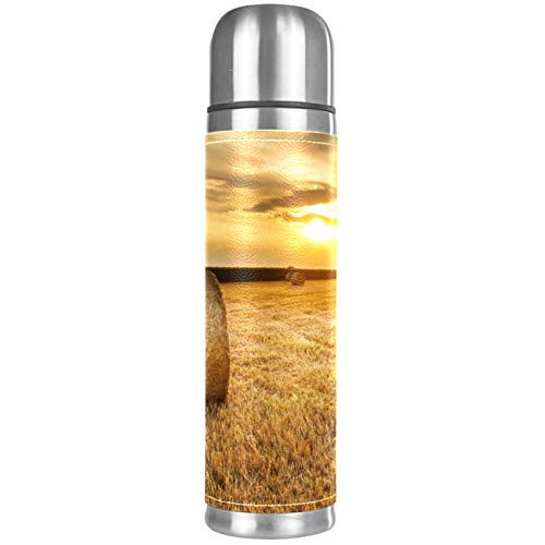 Best Stainless Steel Coffee Thermos Food grade materials Double-layer stainless steel structure liner Hot & Cold for Hours (17 oz/500ml) Straw At Dusk 10.2x2.6 in