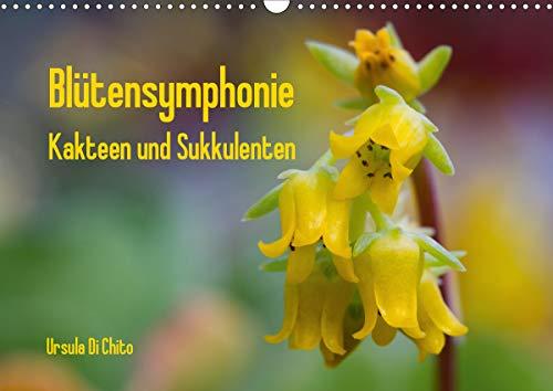 Blütensymphonie - Kakteen und Sukkulenten (Wandkalender 2021 DIN A3 quer)