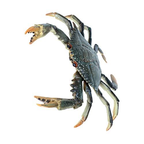 TOYANDONA Figuras de Animales del Océano de Plástico Modelos de Cangrejo Modelo Realista para La Colección Ciencia Accesorios Educativos Escenario Drama Fotografía Prop Restaurante