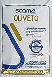 SCAM OLIVETO 25KG CONCIME Organo Minerale NPK con Boro, Ferro e Zinco concime...