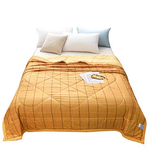Chickwin Colchas Acolchadas, Sencillo Estilo Imprimir Colcha Acolchada Verano Reversible Edredón Colchas Suave Manta de Dormitorio para Cama Individual Matrimonio (Patrón de cadrícula,200x230cm)