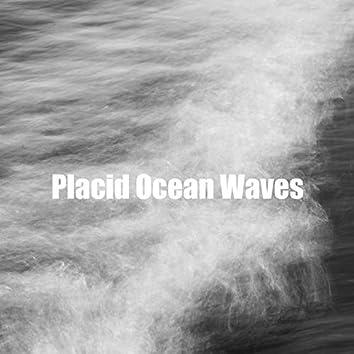 Placid Ocean Waves