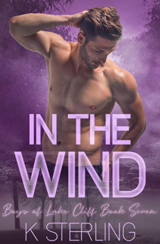 In The Wind: Boys Of Lake Cliff Book 7