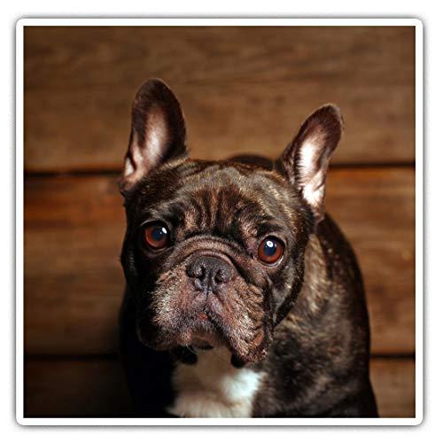 Impresionante pegatinas cuadradas (juego de 2) 10 cm, diseño de perro bulldog francés divertido para portátiles, tabletas, equipaje, reserva de chatarras, neveras, regalo genial #2689