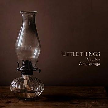 Little Things (feat. Gaudea)