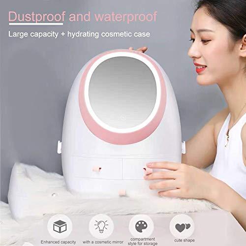 Fancylande Opbergdoos voor cosmetica, met verlichte spiegel en LED-licht, draagbaar, voor cosmeticapenseel