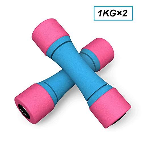 Pesas universales con Mancuernas para Mujer Mancuerna señoras a casa aparatos de Ejercicios de Yoga Pilates Gimnasia mancuerna 2kg / 4 kg, un Par Mancuerna de Levantamiento de Pesas (tamaño : 2kg*2)
