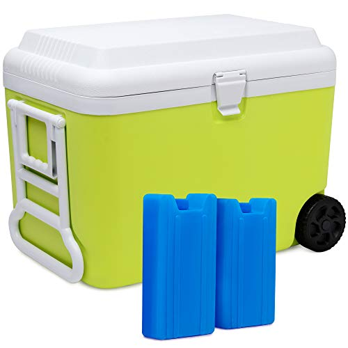 SUNMER 50L Cooler Box With 2 Ice Packs