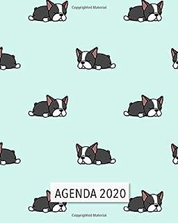 Amazon.es: agendas - Tapa blanda