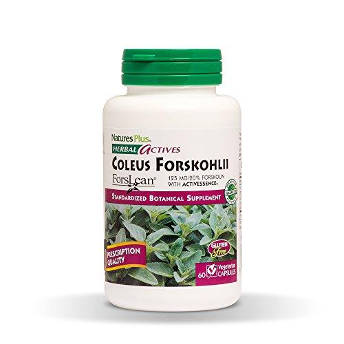 NaturesPlus Herbal Actives Coleus Forskohlii - 125 mg, 60 Vegan...