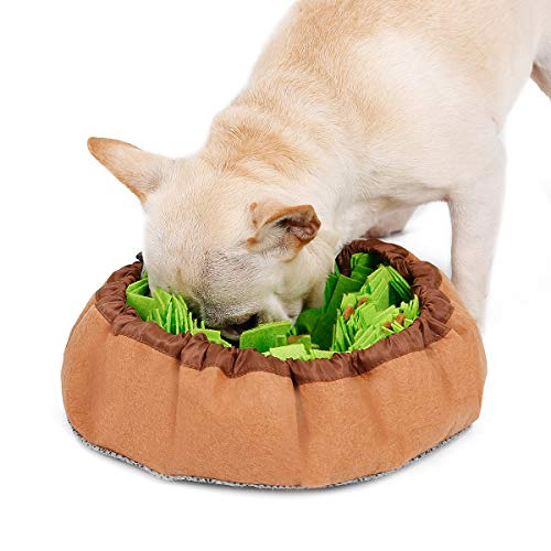Studio 21 Graphix Snuffle Mat for Dogs Large, Dog Puzzle Toys for Smart Dogs, Slow Eating Dog Bowl, Dog Interactive Toys Encourages Natural Foraging Skills (Green)